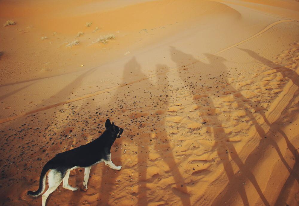 Morocco: Sahara Desert Guide – Merzouga Part 2