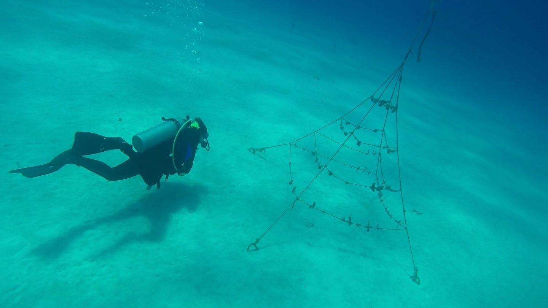 Solo Travel - Das Meer reinigen mit Help2Oceans - willascherrybomb - yvonne karnath