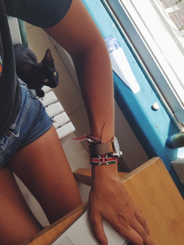 Gedankenpost - Wie eine kleine Katze mir das Entspannen lehrte - willascherrybomb
