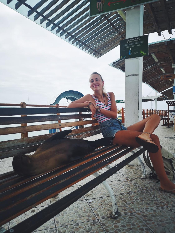 Galapagos on a Budget: Santa Cruz – Alles was du wissen musst!