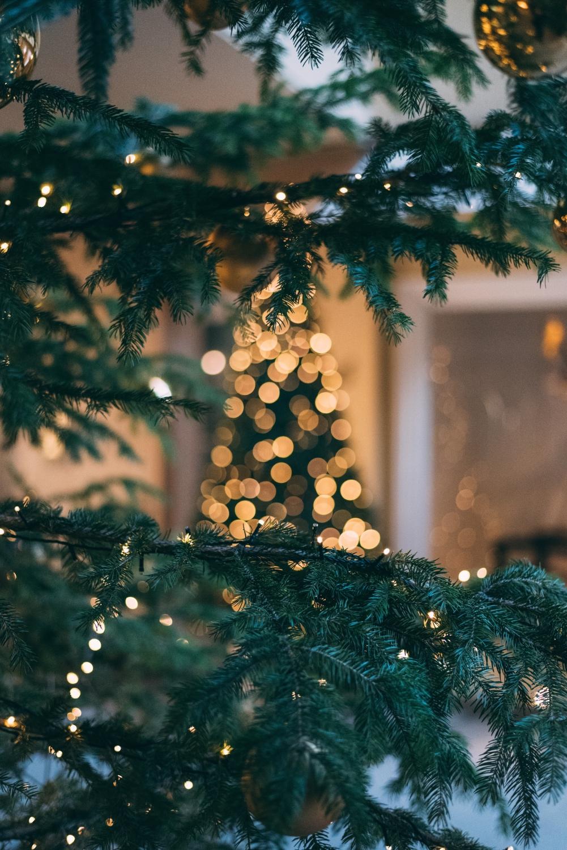 Gedankenpost: Der Druck der Weihnachtszeit - willascherrybomb