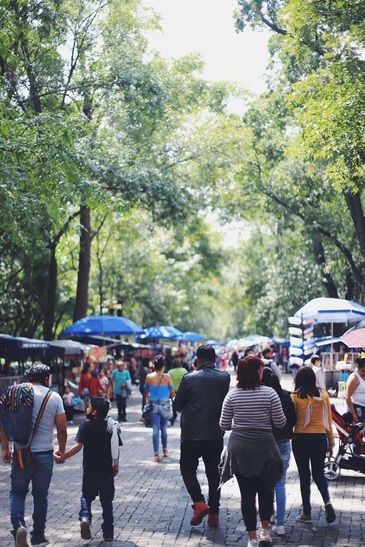 Covid-19 in Mexiko Stadt – So sieht mein Leben aus